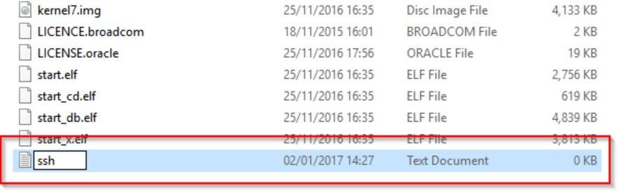 Private VPN on Raspberry Pi - HttpException